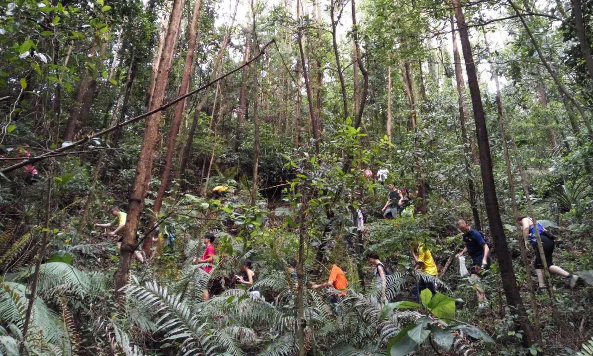 Guangzhou Hash House Harriers